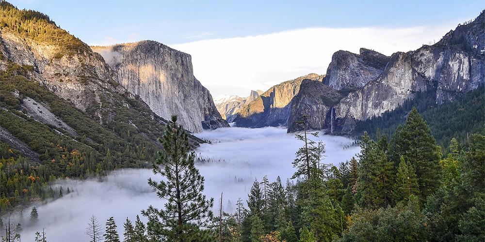 Yosemite Ranger Tours