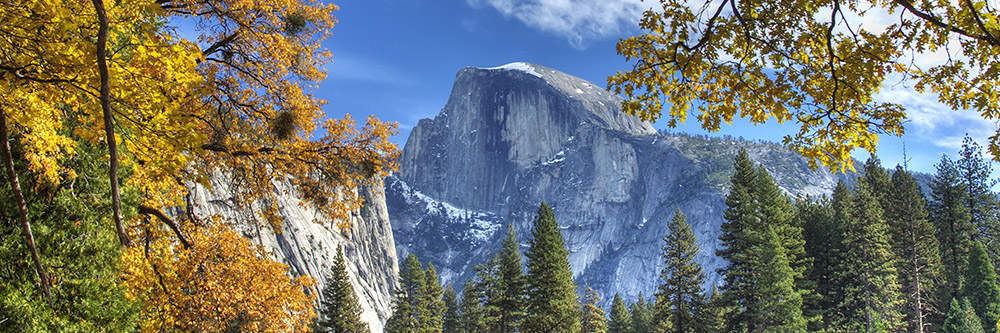 Fall in Yosemite National Park