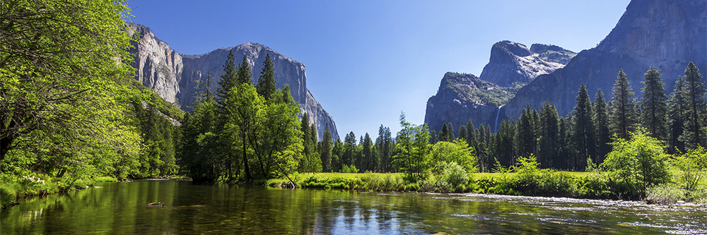 Summer in Yosemite National Park