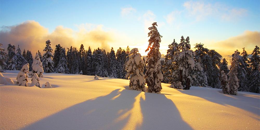 yosemite national park winter experience