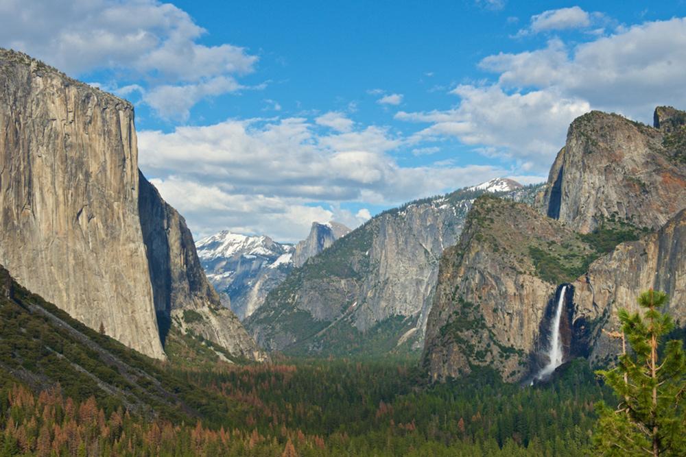 Guided Bus Amp Tram Tours Yosemite National Park Ca